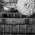 Dahlia On Old Books by Garry Gay