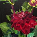 Dahlias In My Garden by Linda Feinberg