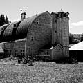 Dahmen Barn by David Patterson