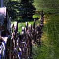 Dahmen Fenceline by David Patterson