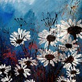 Daisies 59060 by Pol Ledent