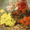 Daisies, Begonia, And Other Flowers In Pots by Eugene Henri Cauchois