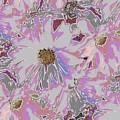 Daisies Galore by Tim Allen