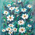 Daisies Golden Eyed by Usha Shantharam