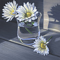 Daisies In Drinking Glass No. 2 by Steven Tetlow