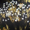 Daisies In Gold Abstraction by Michela Akers
