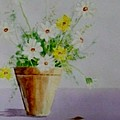 Daisies In Pot by Jamie Frier