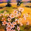 Daisies In The Sun by Carole Spandau