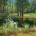 Daisies On The Golf Course by Michele Thorp