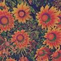 Pop Art Daisies Orange by Jenny Revitz Soper