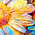 Daisy 2 by Chris Butler
