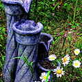 Daisy Fountain by Jeff Kurtz