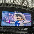 Dallas Cowboys Rowdy by Craig David Morrison