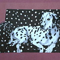 Dalmatian On A Spotted Couch by Terri Mills