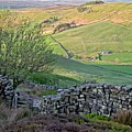 Danby Dale Countryside by Martyn Arnold