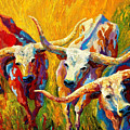 Dance Of The Longhorns by Marion Rose