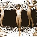 Dance Of The Seven Nudes by John Haldane
