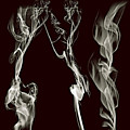 Dancing Apparitions by Clayton Bruster