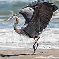 Dancing Heron Triptych by Patti Deters