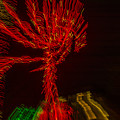 Dancing Lights 6 - Palm Tree by Penny Lisowski