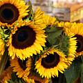 Dancing Sunflowers by Madeline Ellis