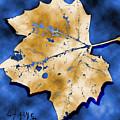 Dancing Tan Leaf by Carolyn Saine