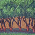 Dancing Trees by Dolores Holt