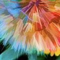 Dandelion Circus by Terry Davis