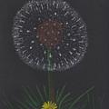 Dandelion by M Valeriano