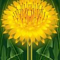 Dandelion Lion's Tooth Print by Garth Glazier