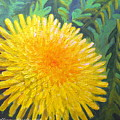 Dandelion by Sharon Marcella Marston