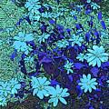 Dandy Digital Daisies In Blue by Marian Bell