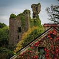 Dangan Castle In Ballynacally by James Truett