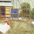 Dan's Chickens by Brian Ocello