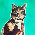 Daphne The Calico Cat by Dori Durbin