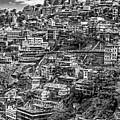 Darjeeling Monochrome by Steve Harrington