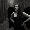 Dark Angel by Brian Hughes