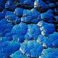 Dark Blue by Hideaki Sakurai