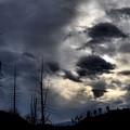 Dark Clouds by Tara Turner