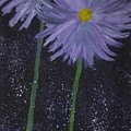 Dark Floral  by Pamula Reeves-Barker