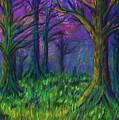 Dark Forest by Stephanie Elaine Smith