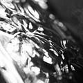 Dark Glass by Alex Art and Photo