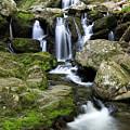 Dark Hollow Falls Cascades by Jemmy Archer