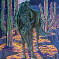 Dark Horse by Karin Griffiths