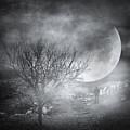 Dark Night Sky Paradox by Zapista Zapista
