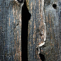 Dark Old Wooden Boards With Shadow by Jozef Jankola