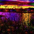 Dark Psychedelic Sunset by Ron Fleishman
