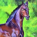Dark Red Bay Horse by Anne Cameron Cutri