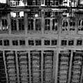 Dark Reflection by Tim Wilson