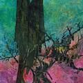 Dark Sentinels by James Douglas Draper